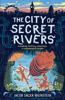 Image for The city of secret rivers