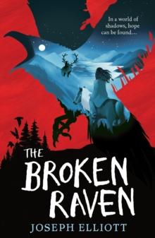Image for The broken raven