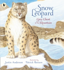 Image for Snow leopard  : grey ghost of the mountain