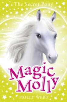 Image for The secret pony