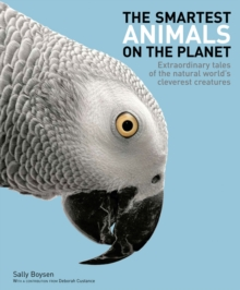 Image for The smartest animals on the planet  : extraordinary tales of the natural world's cleverest creatures