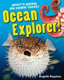 Image for Ocean explorer!