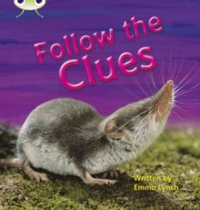 Image for Bug Club Phonics Non-fiction Set 18 Follow the Clues