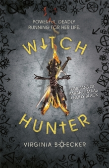Image for Witch hunter