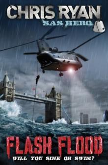 Image for Flash flood