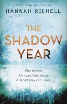Image for The shadow year