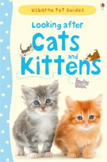 Image for Looking after cats and kittens