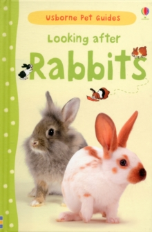 Image for Looking after rabbits