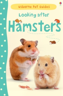 Image for Looking after hamsters