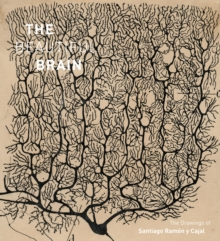 Image for The beautiful brain  : the drawings of Santiago Ramâon y Cajal