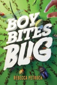 Image for Boy Bites Bug