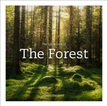 Image for Life & Love of the Forest