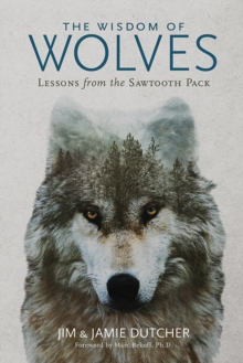 Image for The Wisdom of Wolves