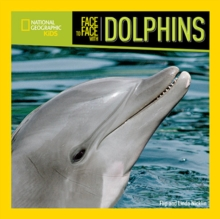 Image for Face to face with dolphins