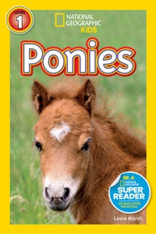 Image for Ponies
