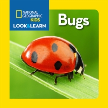Image for Look and Learn: Bugs