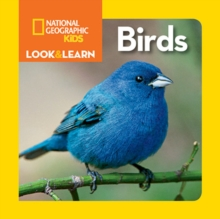 Birds - National Geographic Kids