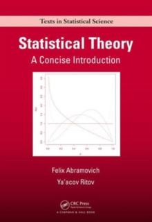 Image for Statistical theory  : a concise introduction