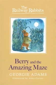 Image for Berry and the amazing maze