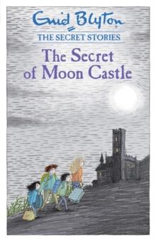 Image for The secret of Moon Castle