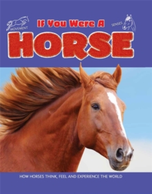 Image for If you were a horse