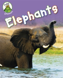 Image for Elephants