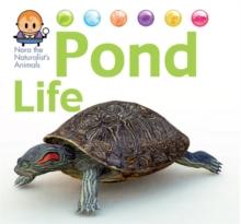 Image for Pond life