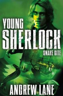 Image for Snake bite