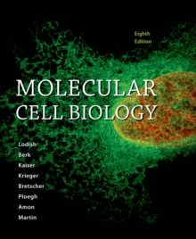 Image for Molecular cell biology
