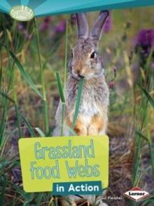 Image for Grassland Food Webs in Action