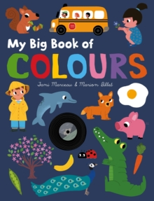 Image for My big book of colours