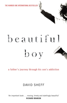 Image for Beautiful boy  : a father's journey through his son's meth addiction