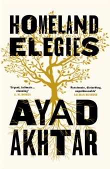 Image for Homeland elegies