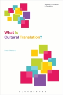 Image for What is cultural translation?