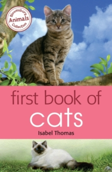 Image for First book of cats