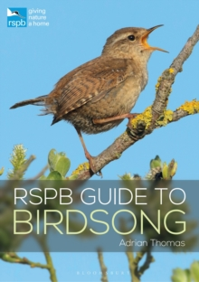 Image for RSPB guide to birdsong