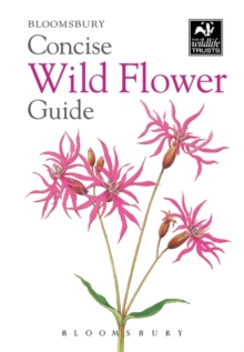 Image for Concise wild flower guide