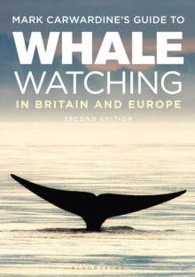 Image for Mark Carwardine's guide to whale watching in Britain and Europe