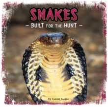 Image for Snakes  : built for the hunt