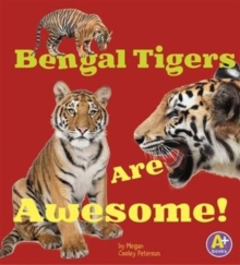 Image for Awesome Asian Animals Pack A of 6
