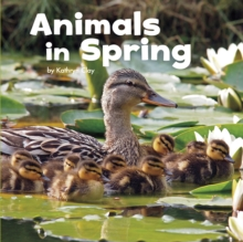 Animals in spring - Clay, Kathryn