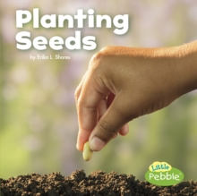 Planting seeds - Clay, Kathryn