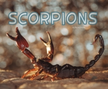 Image for Scorpions
