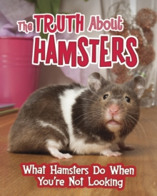 The truth about hamsters  : what hamsters do when you're not looking - Colson, Mary