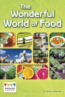 Image for The wonderful world of food