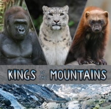 Image for Kings of the mountains