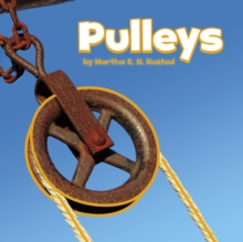 Image for Pulleys