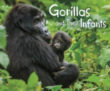 Image for Gorillas and their infants