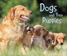Dogs and their puppies - Tagliaferro, Linda