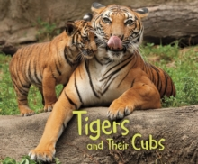 Tigers and their cubs - Hall, Margaret